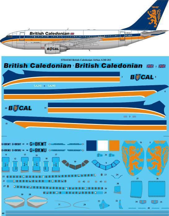 STS44-365_British_Caledonian_Airbus_A310-W