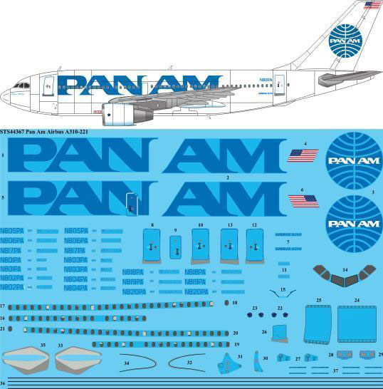 STS44-367-Pan_Am_A310-W